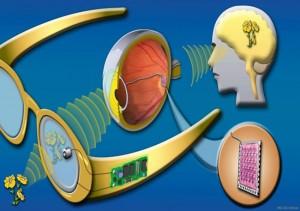 prothese-optique