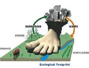 empreinte-ecologique-avenir-investir